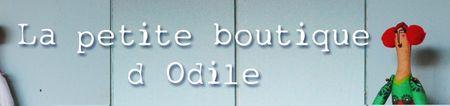 Bandeau boutique blog