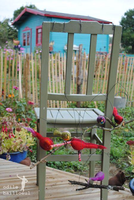 Oiseaux dehors