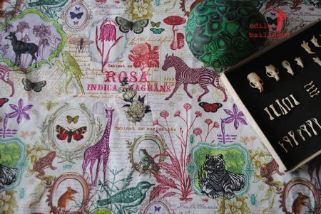 Mini tissu collections