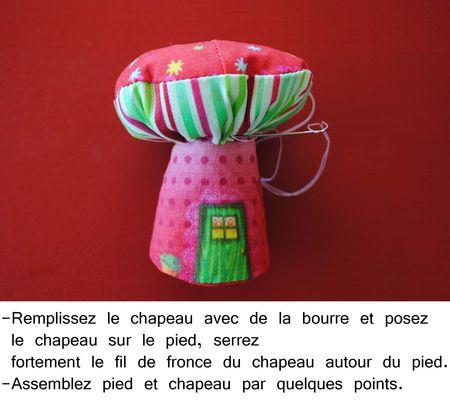 Mini champi 8