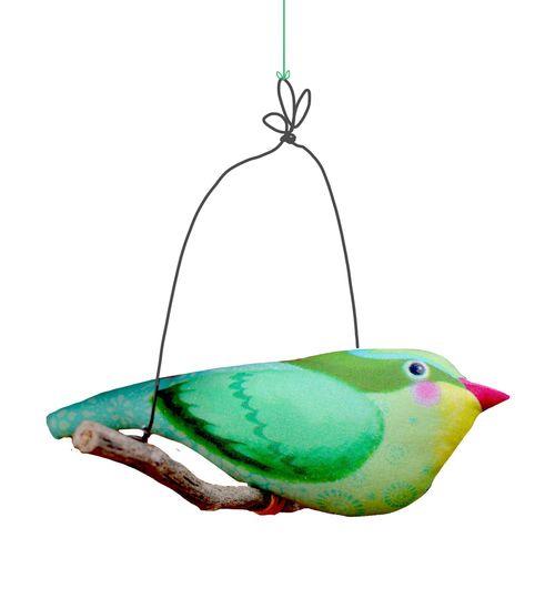 Oiseau vert