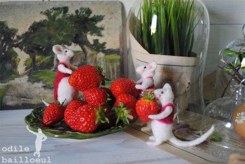 Mini fraises