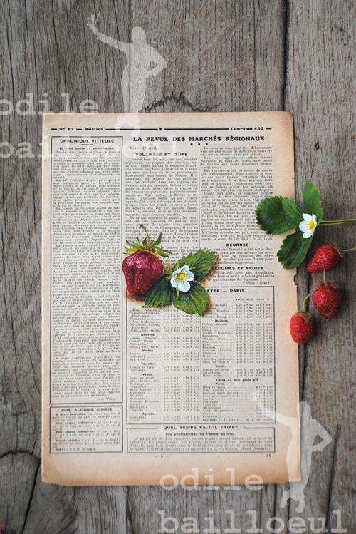 Mini fraises sur table