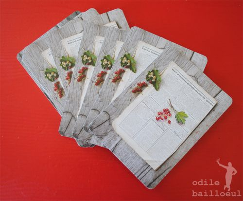 Cartes groseilles