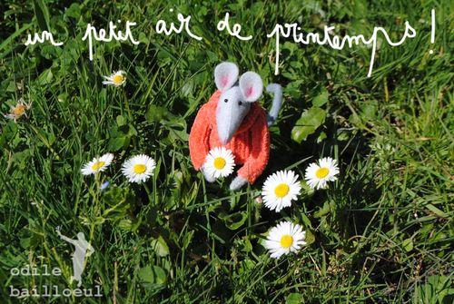 Mini printemps