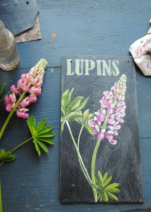 Mini lupin 3
