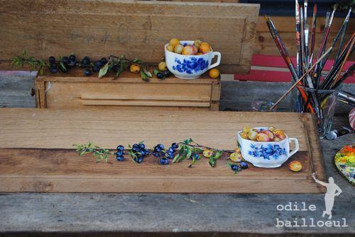 Prunelles et mirabelles 2