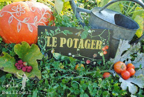 Mini potager